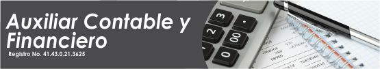 auxiliar contable financiero